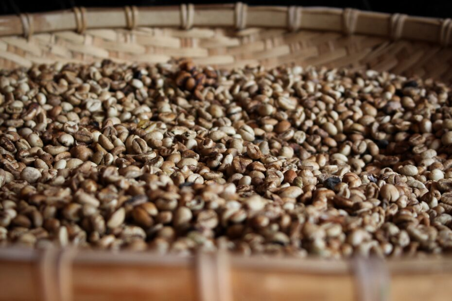 coffee beans in brown winnowing basket